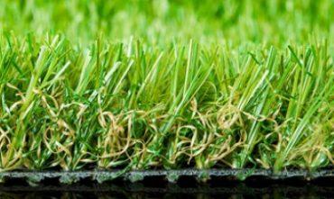 meadow_0