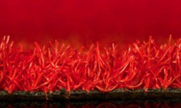 rood_0
